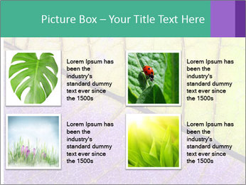 0000081619 PowerPoint Template - Slide 14