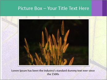 0000081619 PowerPoint Template - Slide 16