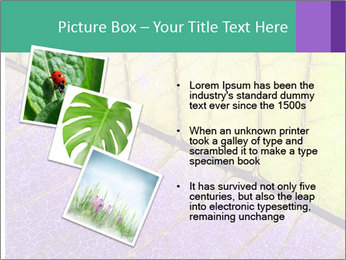 0000081619 PowerPoint Templates - Slide 17