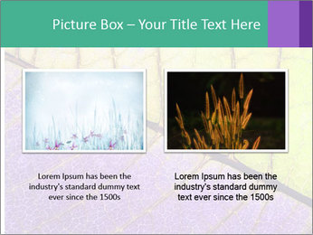 0000081619 PowerPoint Template - Slide 18