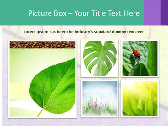 0000081619 PowerPoint Template - Slide 19