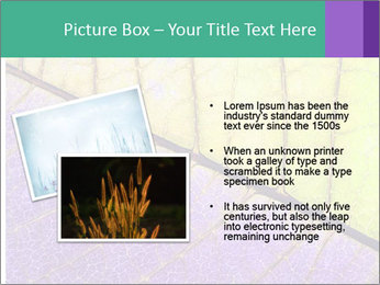 0000081619 PowerPoint Templates - Slide 20