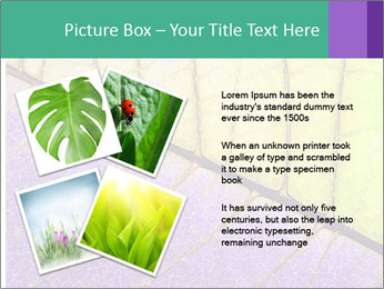 0000081619 PowerPoint Template - Slide 23