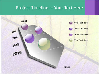 0000081619 PowerPoint Template - Slide 26