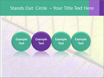 0000081619 PowerPoint Template - Slide 76