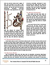0000081621 Word Templates - Page 4