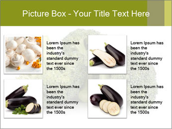 0000081623 PowerPoint Template - Slide 14