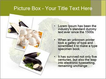 0000081623 PowerPoint Template - Slide 17