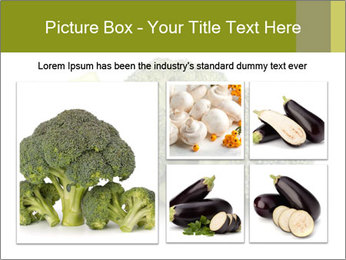 0000081623 PowerPoint Template - Slide 19