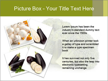 0000081623 PowerPoint Template - Slide 23