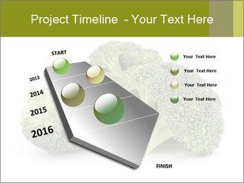 0000081623 PowerPoint Template - Slide 26