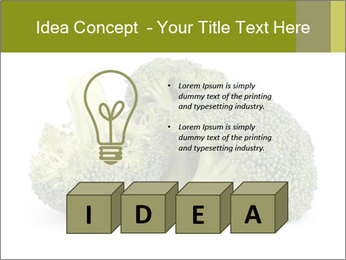 0000081623 PowerPoint Template - Slide 80