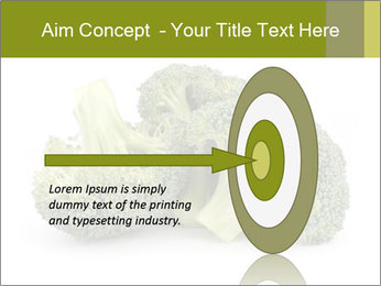 0000081623 PowerPoint Template - Slide 83