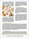 0000081623 Word Template - Page 4