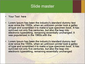 0000081633 PowerPoint Templates - Slide 2