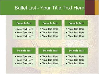 0000081633 PowerPoint Templates - Slide 56