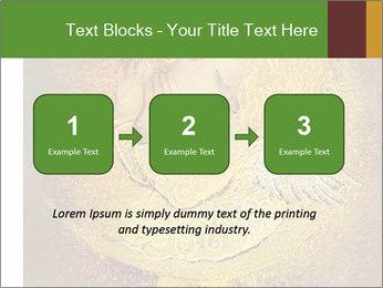0000081633 PowerPoint Templates - Slide 71