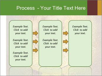 0000081633 PowerPoint Templates - Slide 86