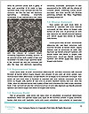 0000081636 Word Templates - Page 4