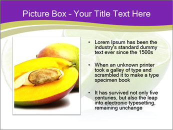 0000081650 PowerPoint Template - Slide 13