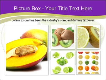 0000081650 PowerPoint Template - Slide 19