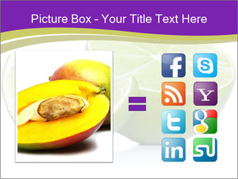 0000081650 PowerPoint Template - Slide 21