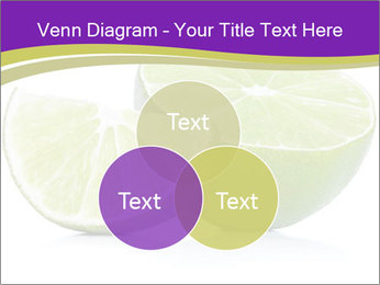 0000081650 PowerPoint Templates - Slide 33