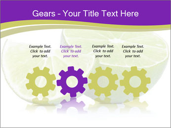 0000081650 PowerPoint Templates - Slide 48