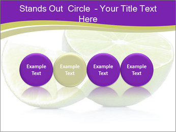 0000081650 PowerPoint Templates - Slide 76