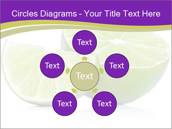 0000081650 PowerPoint Templates - Slide 78