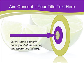 0000081650 PowerPoint Template - Slide 83