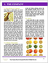 0000081650 Word Template - Page 3