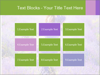 0000081651 PowerPoint Templates - Slide 68