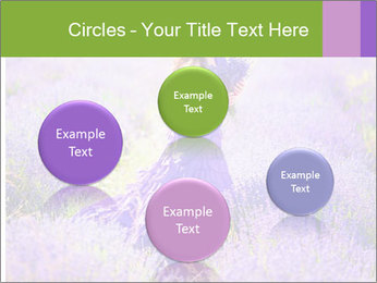 0000081651 PowerPoint Templates - Slide 77