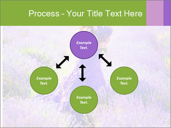 0000081651 PowerPoint Template - Slide 91