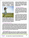 0000081651 Word Template - Page 4