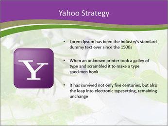 0000081652 PowerPoint Templates - Slide 11