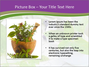 0000081652 PowerPoint Template - Slide 13