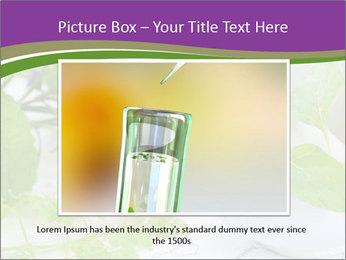 0000081652 PowerPoint Template - Slide 15