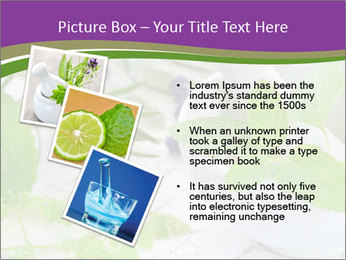 0000081652 PowerPoint Template - Slide 17