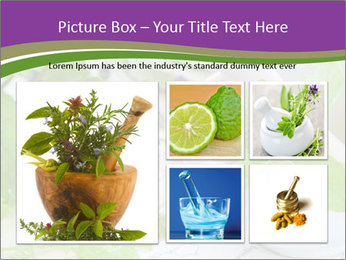 0000081652 PowerPoint Template - Slide 19