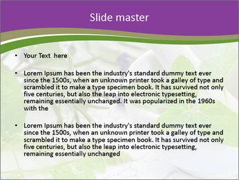 0000081652 PowerPoint Templates - Slide 2