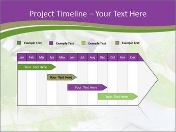 0000081652 PowerPoint Templates - Slide 25