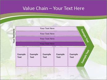 0000081652 PowerPoint Templates - Slide 27