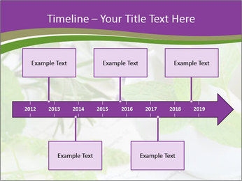 0000081652 PowerPoint Templates - Slide 28
