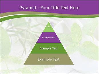 0000081652 PowerPoint Templates - Slide 30