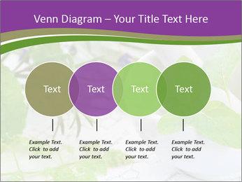 0000081652 PowerPoint Templates - Slide 32
