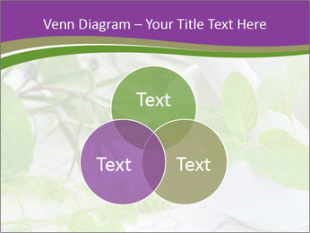 0000081652 PowerPoint Template - Slide 33