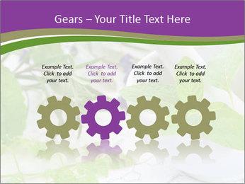 0000081652 PowerPoint Templates - Slide 48