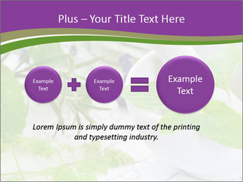 0000081652 PowerPoint Template - Slide 75